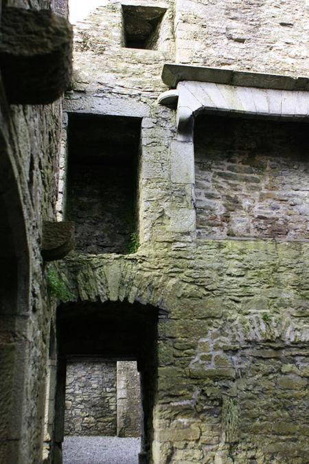 Galwaytour6