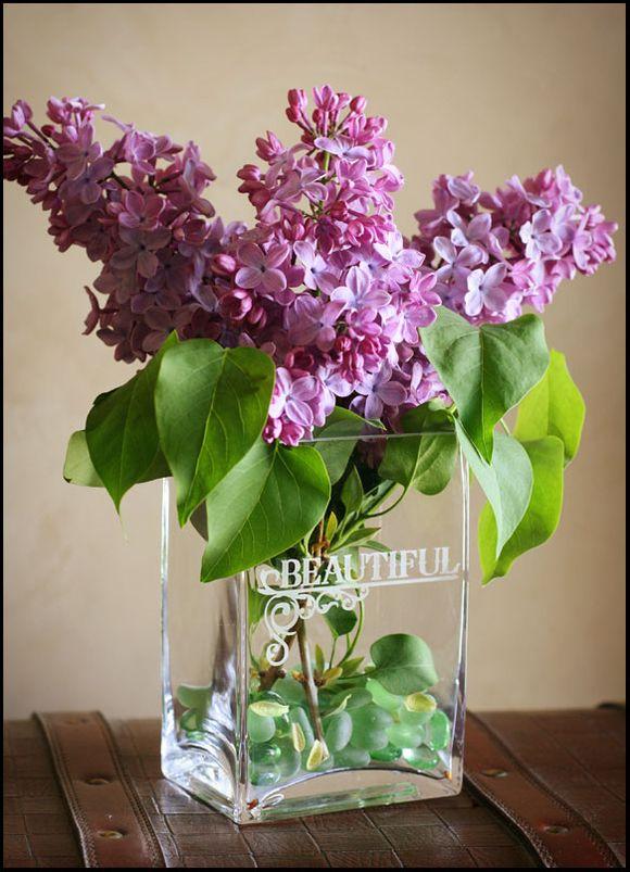 Lilacs_web